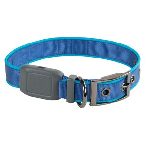Nite Ize NiteDog Rechargeable LED Collar - Medium - Blue