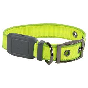 Nite Ize NiteDog Rechargeable LED Collar - Small - Lime Green