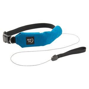 Nite Ize RadDog All-In-One Collar + Leash - Medium - Blue