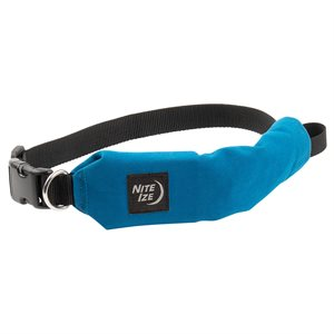 Nite Ize RadDog All-In-One Collar + Leash - Small - Blue